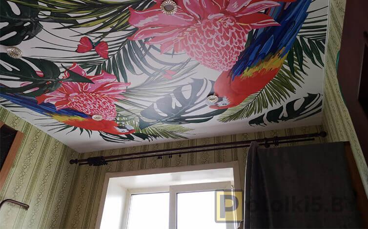 Натяжной потолок с фотопечатью на кухню