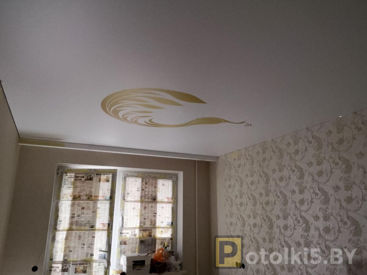 Готовый проект натяжного потолка - Матовый натяжной потолок с фотопечатью